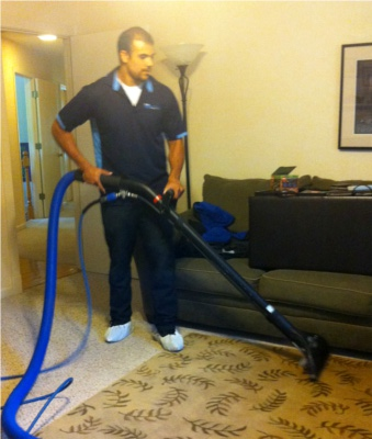 Zerorez Carpet Cleaners Reviews Home The Honoroak