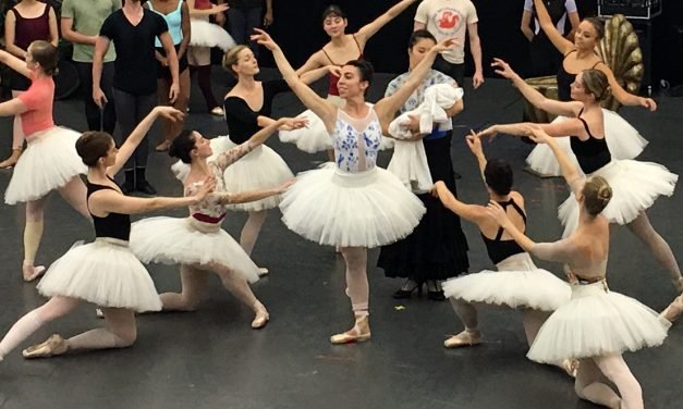 Nashville Ballet's Sleeping Beauty: A Review