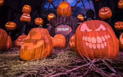 The Glow: A Jack O'Lantern Experience Giveaway!